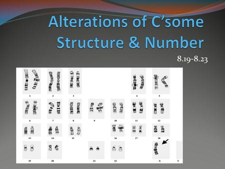 8.19-8.23. Karyotype- magnified images of chromosomes that are arranged in order A human karyotype.