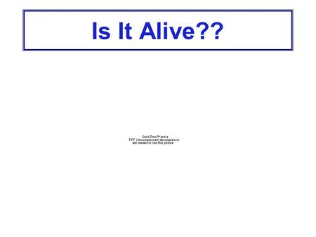 Is It Alive?? 1. Living Things Are Made Up of Cells Unicellular organisms are made of 1 cell Multicellular organisms are made of more than 1 cell Cells.