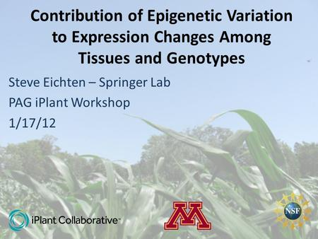 Contribution of Epigenetic Variation to Expression Changes Among Tissues and Genotypes Steve Eichten – Springer Lab PAG iPlant Workshop 1/17/12.