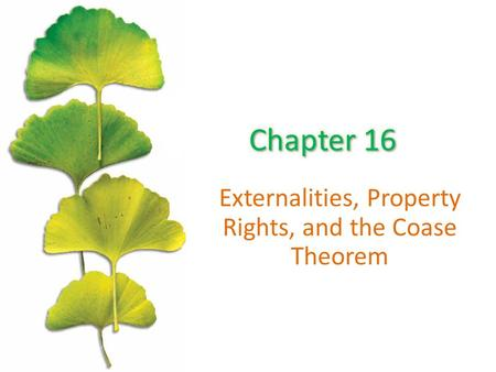 Externalities, Property Rights, and the Coase Theorem.