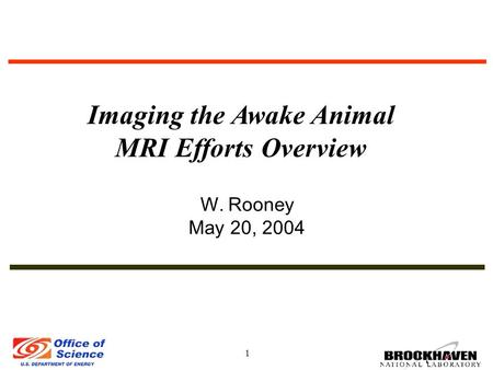 1 W. Rooney May 20, 2004 Imaging the Awake Animal MRI Efforts Overview.