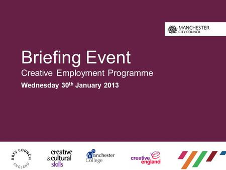 Briefing Event Creative Employment Programme Wednesday 30 th January 2013.
