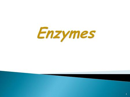 1. Proteins  Enzymes are specialized Proteins Catalysts  Act as Catalysts to accelerate a reaction  Not permanently  Not permanently changed in the.