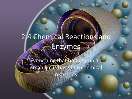 2.4 Chemical Reactions and Enzymes Everything that happens in an organism is based on chemical reactions.