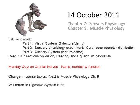 14 October 2011 Chapter 7: Sensory Physiology Chapter 9: Muscle Physiology Lab next week: Part 1: Visual System B (lecture/demo) Part 2: Sensory physiology.