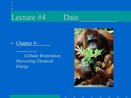 Lecture #4Date _________ Chapter 9~ Cellular Respiration: Harvesting Chemical Energy.