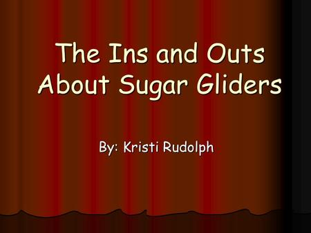 The Ins and Outs About Sugar Gliders By: Kristi Rudolph.