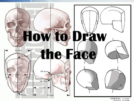 How to Draw the Face. The face is the feature which best distinguishes a person.