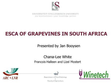 Department of Plant Pathology  Faculty of Agriculture ESCA OF GRAPEVINES IN SOUTH AFRICA Chana-Lee White Francois Halleen and Lizel Mostert Presented.