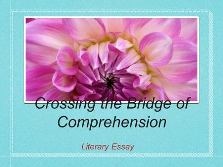 Crossing the Bridge of Comprehension Literary Essay.