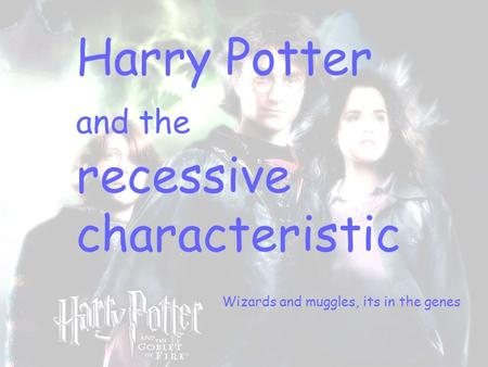 Harry Potter and the recessive characteristic Wizards and muggles, its in the genes.