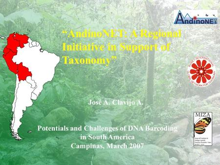 "José A. Clavijo A. Potentials and Challenges of DNA Barcoding in South America Campinas, March 2007 ""AndinoNET: A Regional Initiative in Support of Taxonomy"""