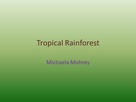 Tropical Rainforest Michaela Mohrey. Location North central America, South America, Africa, Asia, Australasia.