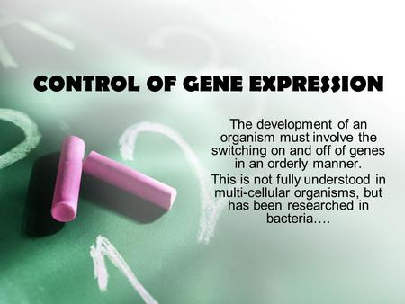 CONTROL OF GENE EXPRESSION The development of an organism must involve the switching on and off of genes in an orderly manner. This is not fully understood.