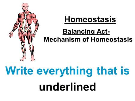 Balancing Act- Mechanism of Homeostasis Write everything that is underlined Homeostasis.
