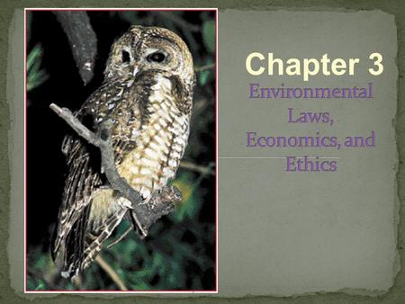 Chapter 3. 1600 1700 1800 1900 Manifest Destiny 1750 1800 1900 Some conservationists were influential in raising environmental concerns later in this.
