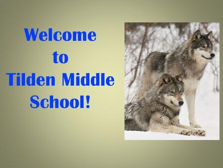 Welcome to Tilden Middle School!. We Are Here To Support You! Irina LaGrange, Principal Jeff Leaman, Assistant Principal Maniya Jules, Assistant Principal.