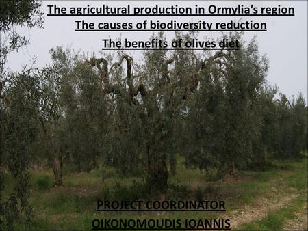 PROJECT COORDINATOR OIKONOMOUDIS IOANNIS The agricultural production in Ormylia's region The causes of biodiversity reduction The benefits of olives diet.