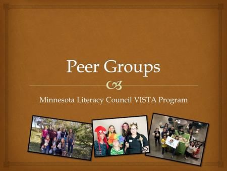 Minnesota Literacy Council VISTA Program.   Smaller groups within the cohort (5-7)  Established at the beginning of each year  (may have some change.