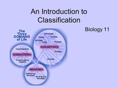 An Introduction to Classification Biology 11. Taxonomy the science of classifying organisms.