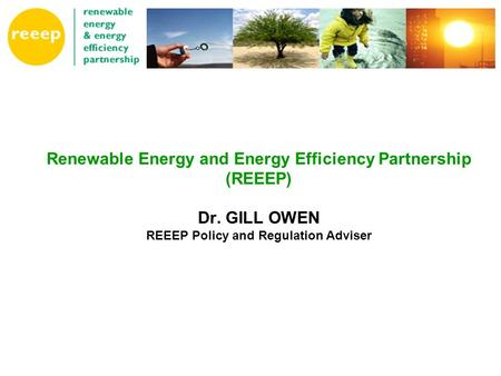 Renewable Energy and Energy Efficiency Partnership (REEEP) Dr. GILL OWEN REEEP Policy and Regulation Adviser.