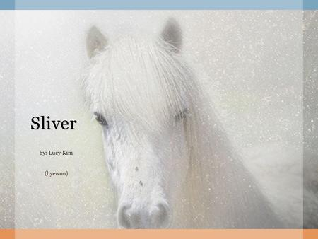 Sliver by: Lucy Kim (hyewon). Sliver by: Lucy Kim.
