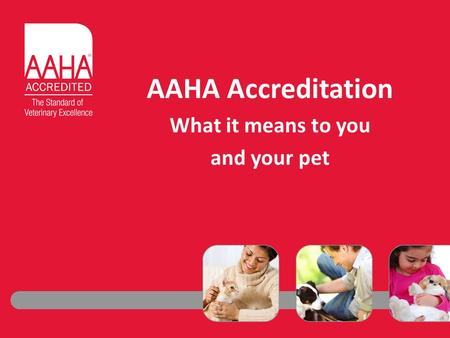 AAHA Accreditation What it means to you and your pet.