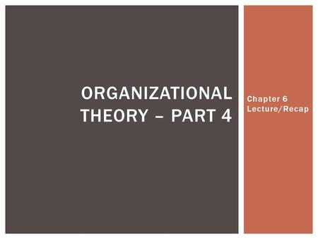 Chapter 6 Lecture/Recap ORGANIZATIONAL THEORY – PART 4.