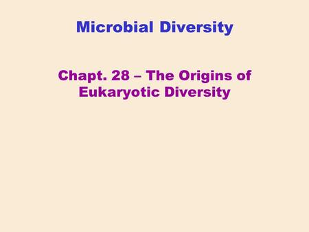 Chapt. 28 – The Origins of Eukaryotic Diversity