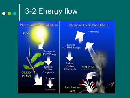 3-2 Energy flow. Producers The sun is the main energy source of life on earth. Some types of organisms rely on the energy stored in inorganic chemical.
