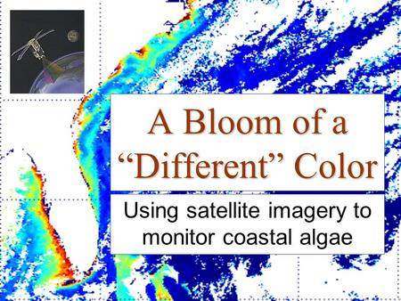 "A Bloom of a ""Different"" Color Using satellite imagery to monitor coastal algae."
