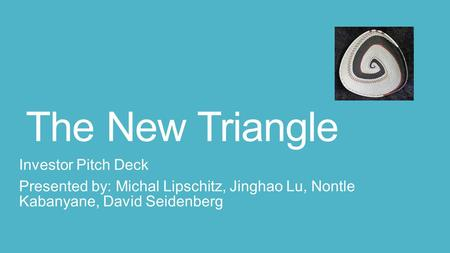 The New Triangle Investor Pitch Deck Presented by: Michal Lipschitz, Jinghao Lu, Nontle Kabanyane, David Seidenberg.