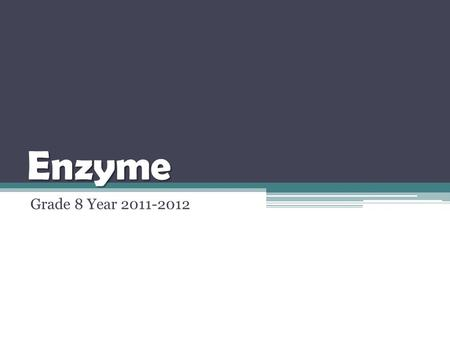 Enzyme Grade 8 Year 2011-2012.