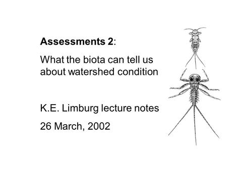 Assessments 2: What the biota can tell us about watershed condition K.E. Limburg lecture notes 26 March, 2002.