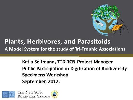 Plants, Herbivores, and Parasitoids A Model System for the study of Tri-Trophic Associations Katja Seltmann, TTD-TCN Project Manager Public Participation.