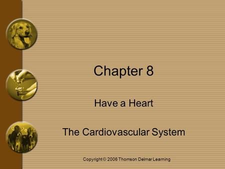 Copyright © 2006 Thomson Delmar Learning Chapter 8 Have a Heart The Cardiovascular System.