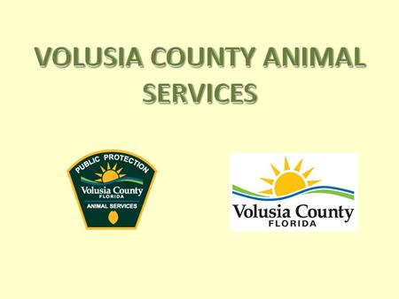 The Animal Services Division of Volusia County is committed to insuring citizen and animal safety, promotion of responsible pet ownership and the reduction.