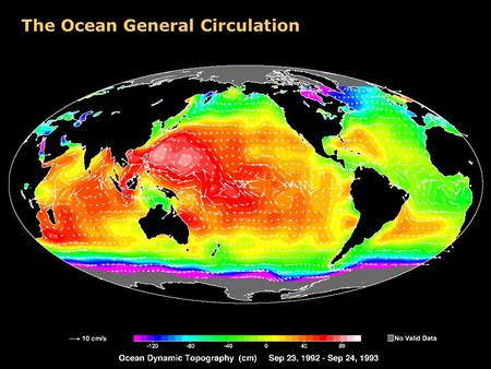 The Ocean General Circulation. Mean Circulation in the Ocean Gulf Stream.