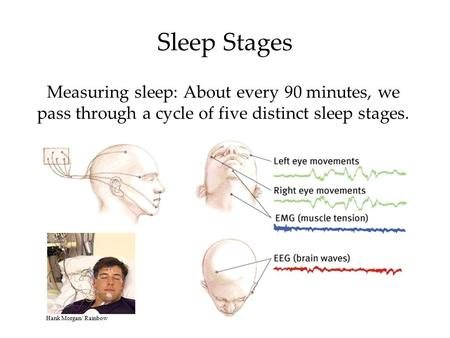 Measuring sleep: About every 90 minutes, we pass through a cycle of five distinct sleep stages. Sleep Stages Hank Morgan/ Rainbow.