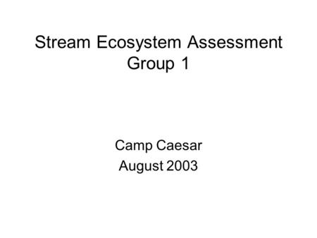 Stream Ecosystem Assessment Group 1 Camp Caesar August 2003.