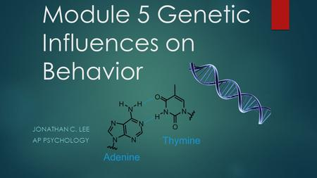 Module 5 Genetic Influences on Behavior JONATHAN C. LEE AP PSYCHOLOGY.