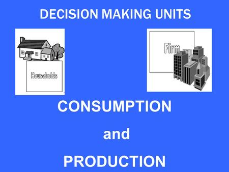 DECISION MAKING UNITS CONSUMPTION and PRODUCTION.
