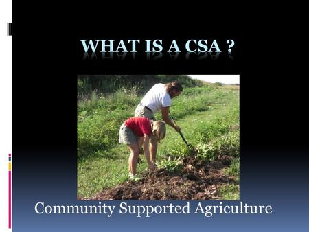 Community Supported Agriculture. How does a CSA impact global warming ? No Shipping Less Packaging No Cold Storage Preserves Farmland Stays local.