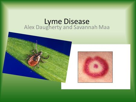 Lyme Disease Alex Daugherty and Savannah Maa. History ►►►►►►►►►► Early 1970's Rheumatoid Arthritis cases broke out in Lyme, Connecticut Most were among.