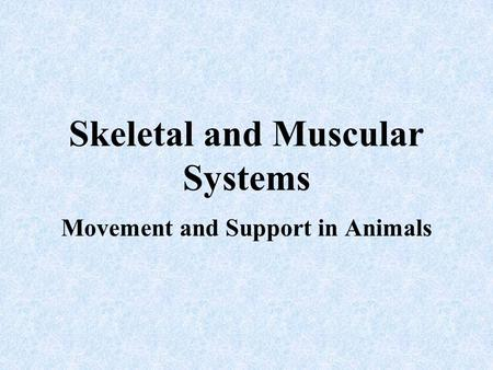 Skeletal and Muscular Systems Movement and Support in Animals.
