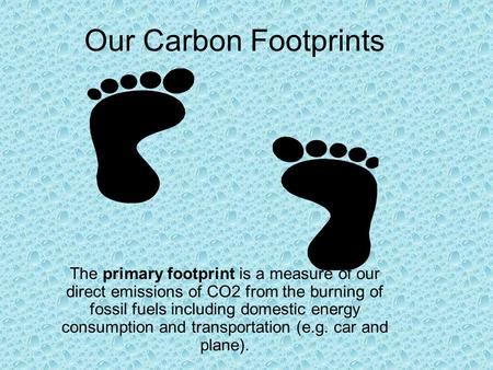 Our Carbon Footprints The primary footprint is a measure of our direct emissions of CO2 from the burning of fossil fuels including domestic energy consumption.