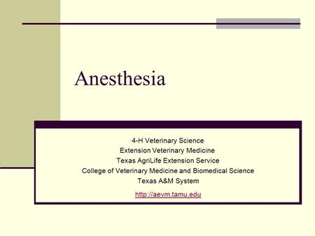 Anesthesia 4-H Veterinary Science Extension Veterinary Medicine Texas AgriLife Extension Service College of Veterinary Medicine and Biomedical Science.