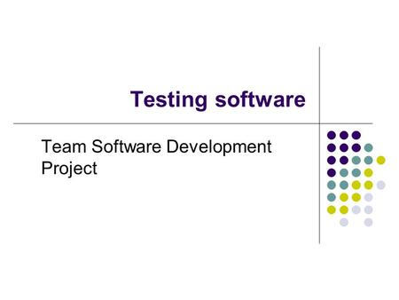 Testing software Team Software Development Project.