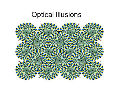 Optical Illusions. An optical illusion (also called a visual illusion) is characterized by visually perceived images that differ from objective reality.