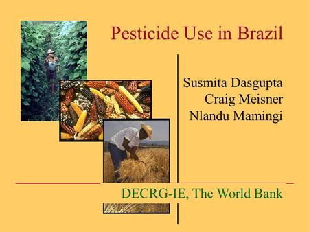 Pesticide Use in Brazil Susmita Dasgupta Craig Meisner Nlandu Mamingi DECRG-IE, The World Bank.